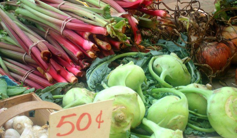 Rhubarb & Root Crops, Oakland Farmer's Market