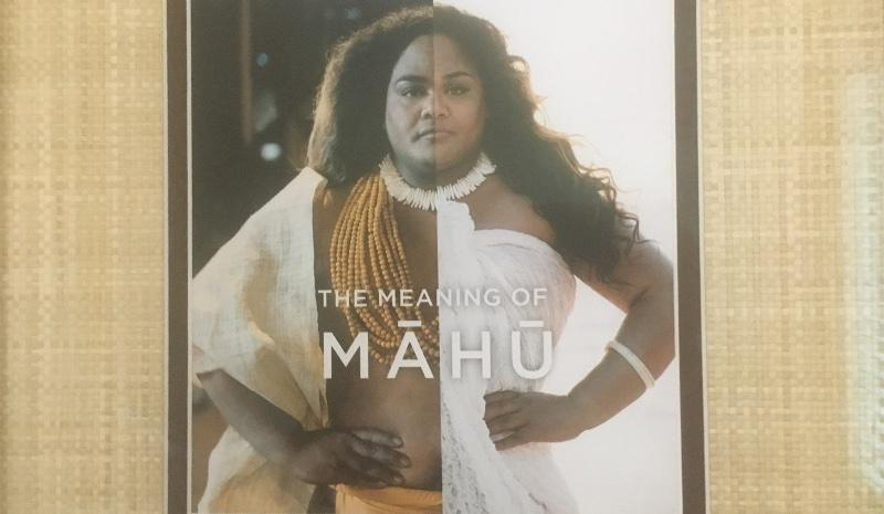 A picture representing Mahu, the Hawaiian that holds expresses both genders.
