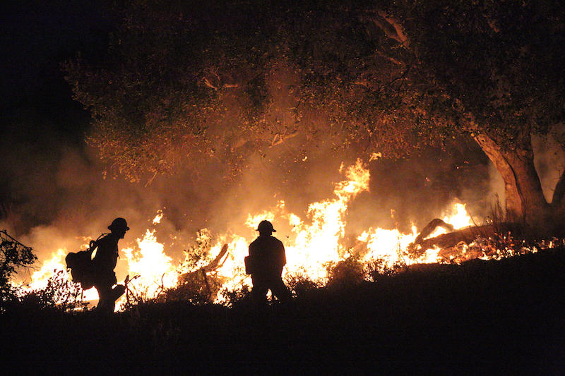 Thomas Fire featured in Wilder than Wild