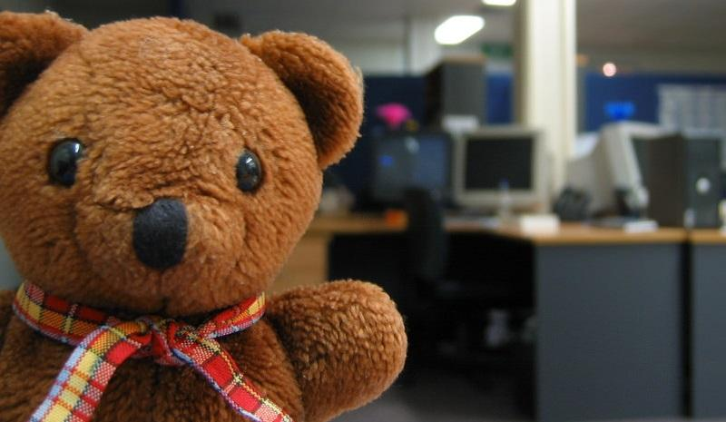 Teddy's office tour, taken by flickr user Ted & Dani Percival