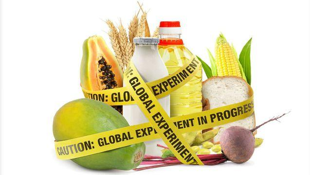 "gmos the future of food ""in the late eighties, i went to a conference on biotechnology, on the future of food,"" she said ""there were no genetically modified organisms then these people were talking about having."