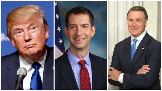 Donald Trump, Tom Cotton, and David Perdue