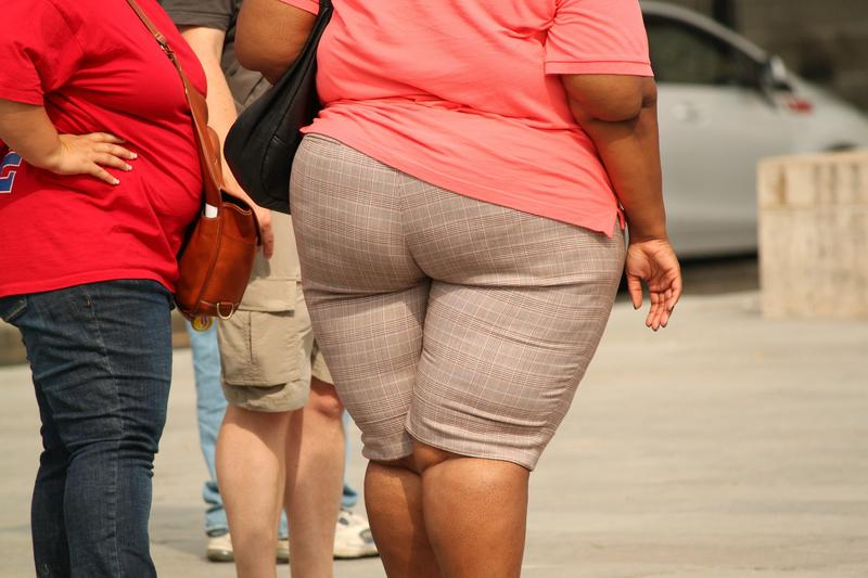 pixabay stock photo of obese women