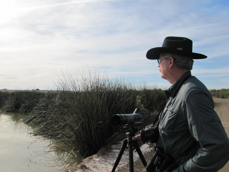 Bob Miller looks out across the water at Alamo River Wetlands Park in Brawley, California