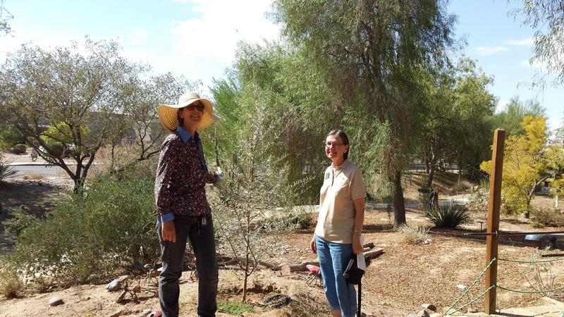 Left: Janine Lane, Master Gardener Program Coordinator Right: Nancy Meister, Master Gardener since 2011; Lane and Meister take a walk through the Robert J. Moody Demonstration Garden behind the University of Arizona Yuma Extension offices.