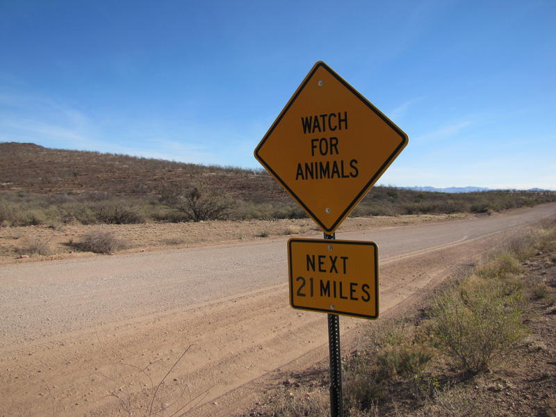 A sign near to the Douglas, AZ international border declares: Watch for Animals...