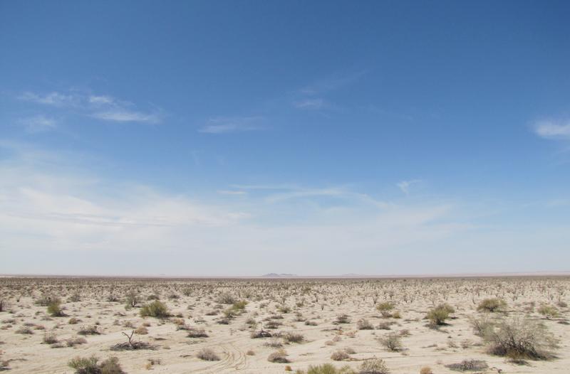 Desert on the U.S./Mexico Border near Yuma, AZ