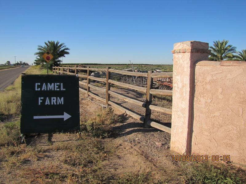 A sign to the Camel Farm/Wild World Zoo in October 2013