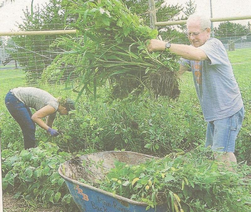 Garden work!