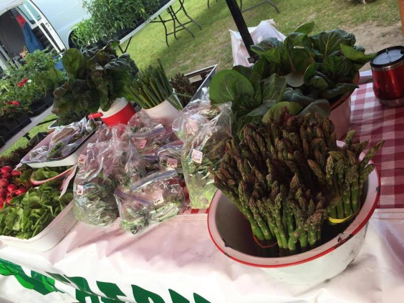 Spring produce at the Grand Rapids Farmers Market