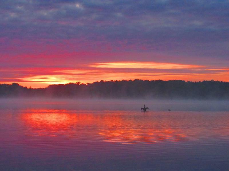 Good morning from Shingobee Lake