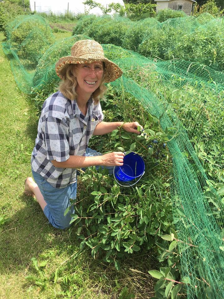 Bernis Ingvaldson at Honeyberry Farm in Bagley