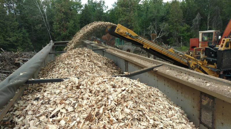 Wood chips loaded for delivery to one of two municipal electric generation plants on Minnesota's Iron RangeLaurentian Energy