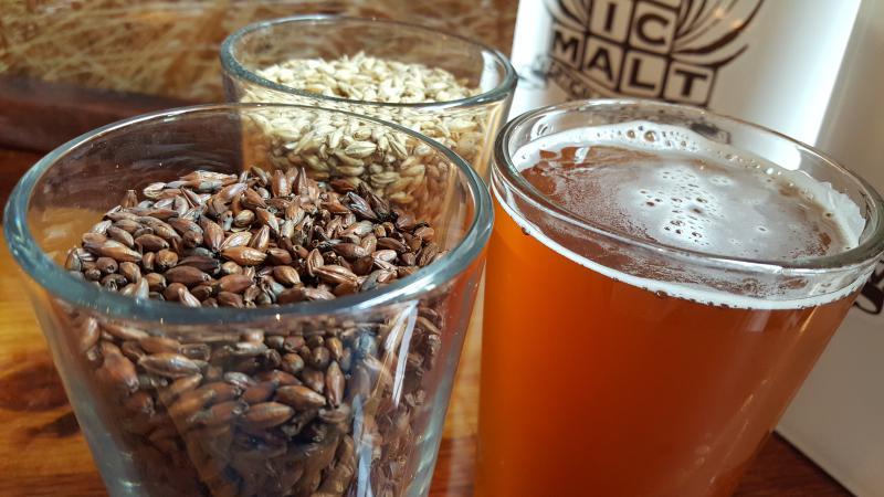 Beer with Vertical Malt