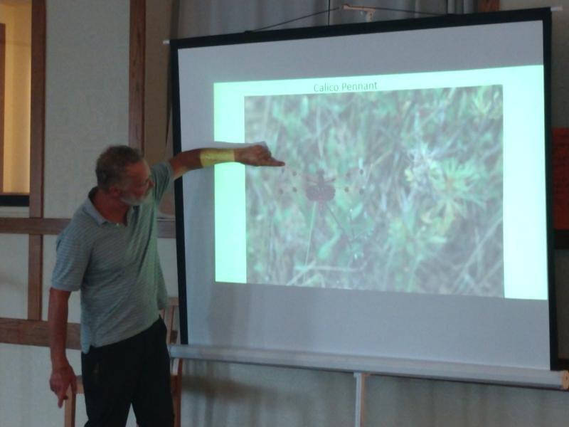 John Latimer points out parts of a dragonfly
