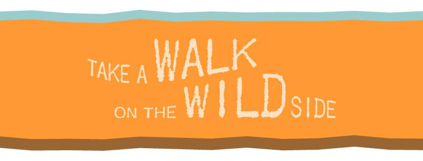 Take A Walk On The Wild Side Saturday In Park Rapids