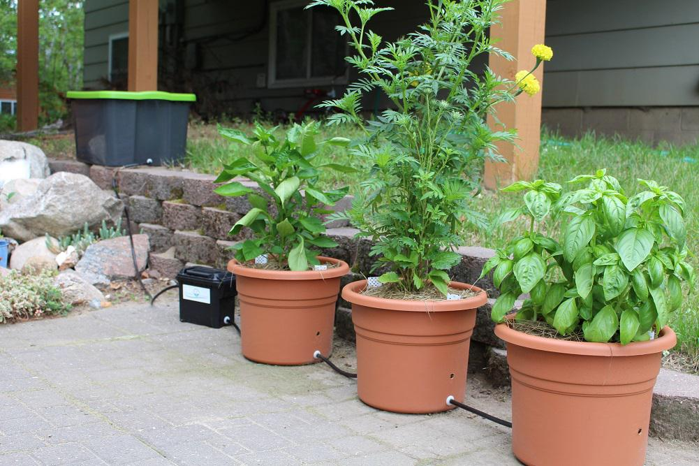 Garden Stream System For Container Planting