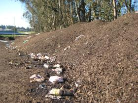 A compost pile at the Monterey Regional Waste Management District already includes compost from the Pro-Am.