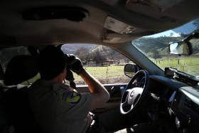 Game Warden Byron Jones watches a few condors from his truck in southern San Benito County.
