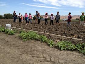 Students at Frank Paul Elementary School in Salinas learn about farming at Coke Farms in San Juan Bautista.