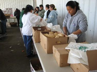 Volunteers at the Second Harvest Food Bank fill bags of food for the USDA food distribution day.