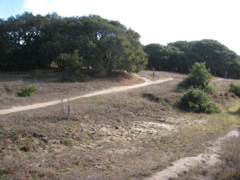 Trails on BLM public lands