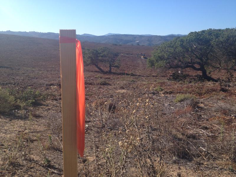 Wooden stakes mark out 100x100 foot grids that the UXO teams work in.