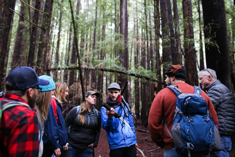 Christian Schwarz of Redwood Coast Tours leads a mushroom identification class through a forest in Santa Cruz. James Tensuan
