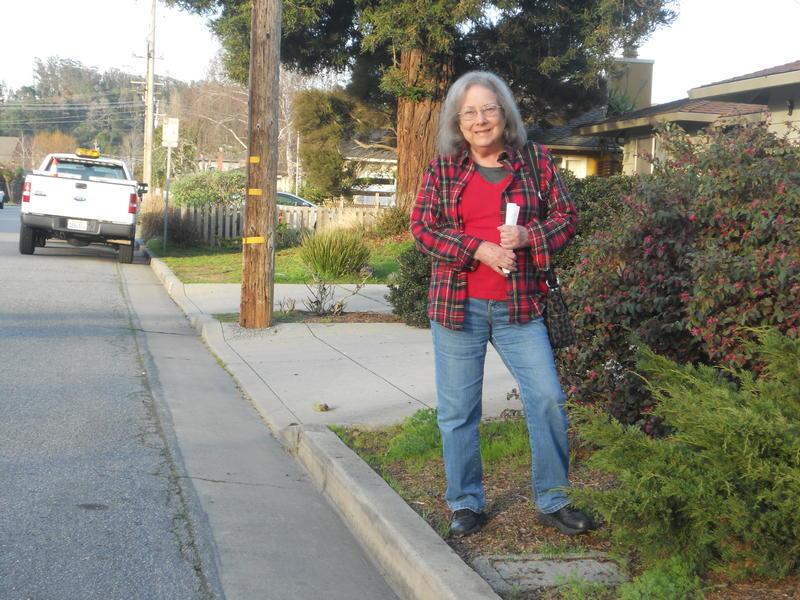 Santa Cruz resident Jan Karwin worries increasing the density of her neighborhood will also increase traffic.