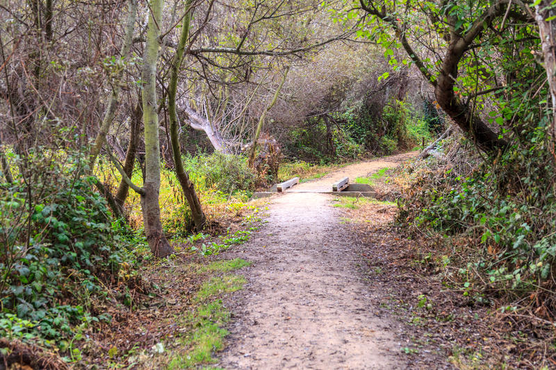 A Trail at the Frog Pond Wetlands Preserve, one of the 27 parks within the Monterey Peninsula Regional Park District.