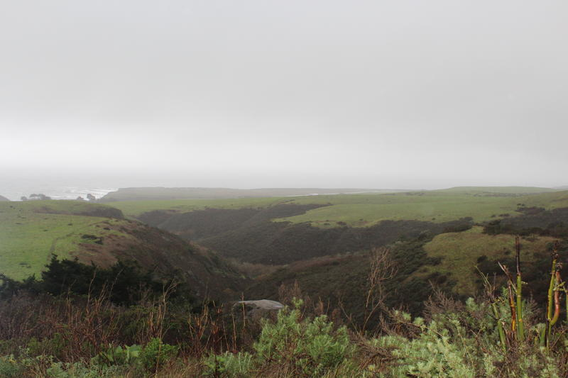 President Obama may expand the California Coastal National Monument to include the land pictured here, a 5,800 acre property on the north coast of Santa Cruz County.
