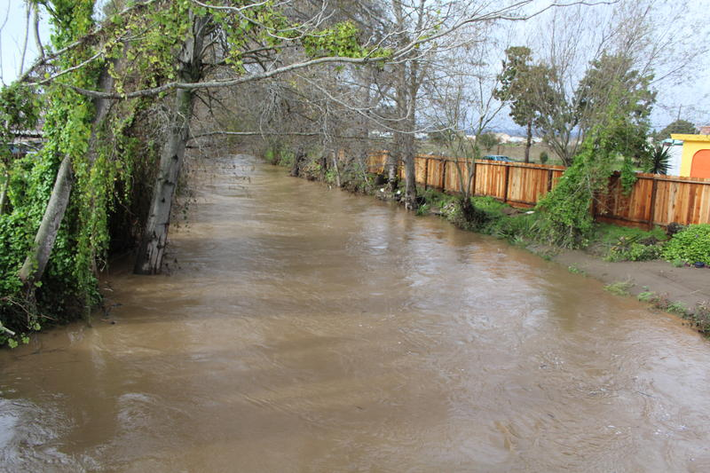 Corralitos Creek looks more like a river after the weekend storm. Santa Cruz County Emergency Services Manager Rosemary Anderson says officials had to rescue two people from the creek.