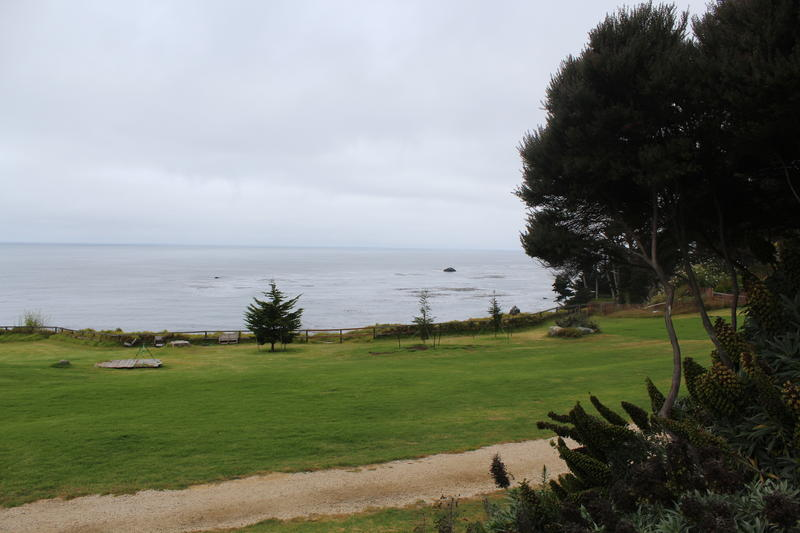 Esalen is perched on the Pacific Ocean. You can hear the waves rolling in from anywhere on the property.