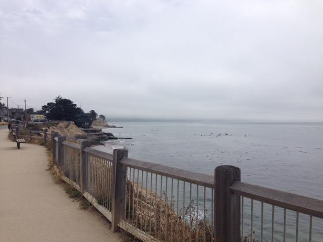 The paddle out will take place behind O'Neill's home on East Cliff Drive in the Pleasure Point neighborhood.