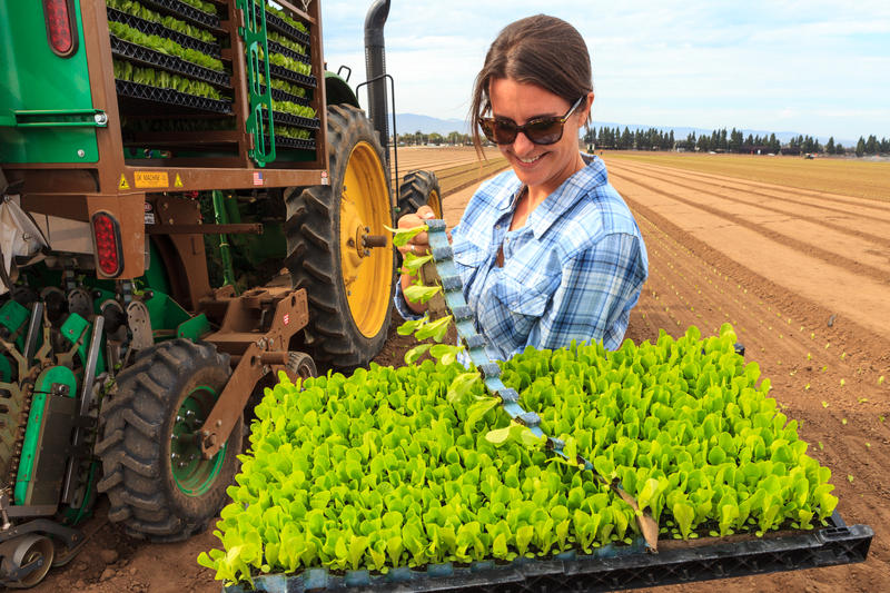 PlantTape Product Development Supervisor Danielle Vallejo with a tray of romaine lettuce sprouts in PlantTape.