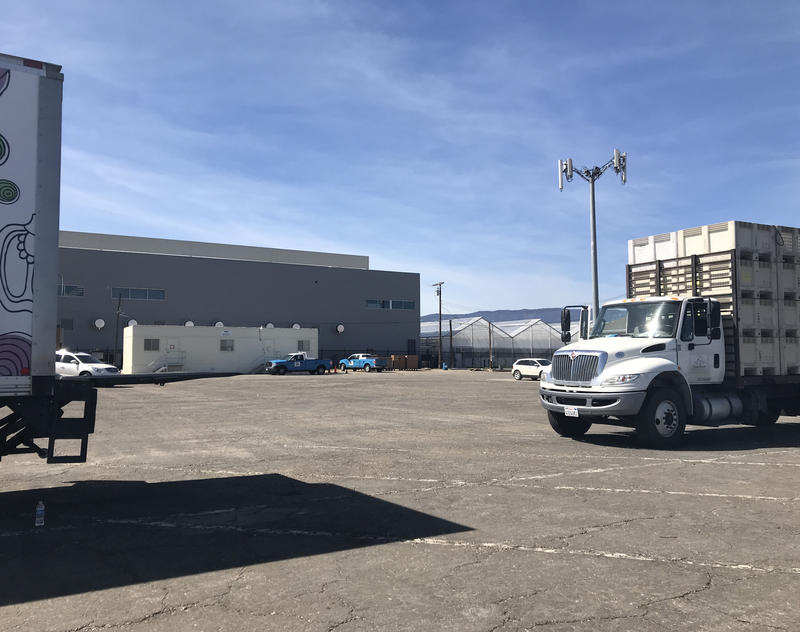 Just behind the trucks, you can see Greenfield's first marijuana facility. Ten more are going up in Greenfield over the next two years.