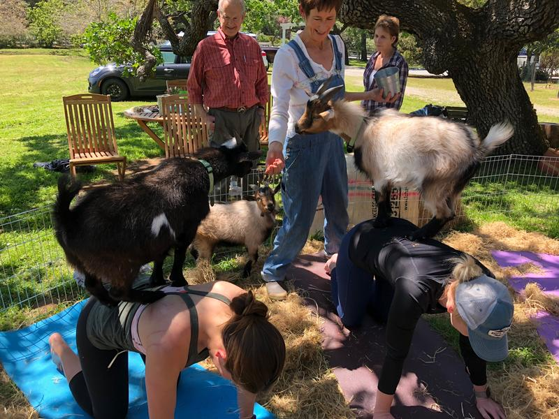 Gray holds classes at her Carmel Valley home the 2nd and 4th weekend of the month.