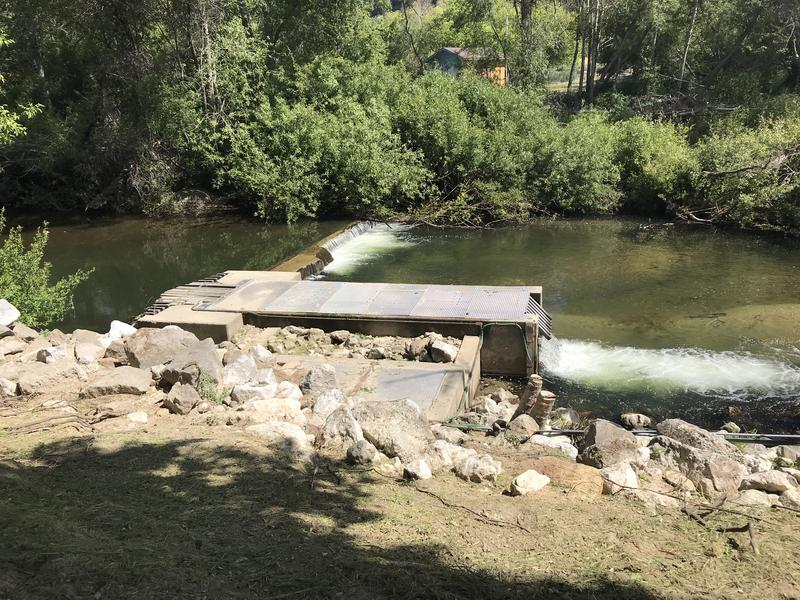 The city's main source of water, the San Lorenzo River, is running low this year.