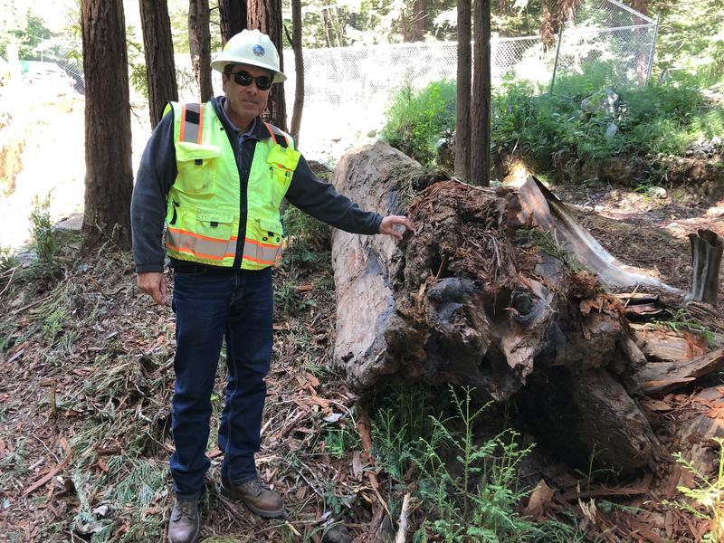 Monterey County Public Works Project Manager Juan Mesa stands next to a burnt out log.  This is the type of debris that washed down the mountainside during the storms of February 2017.