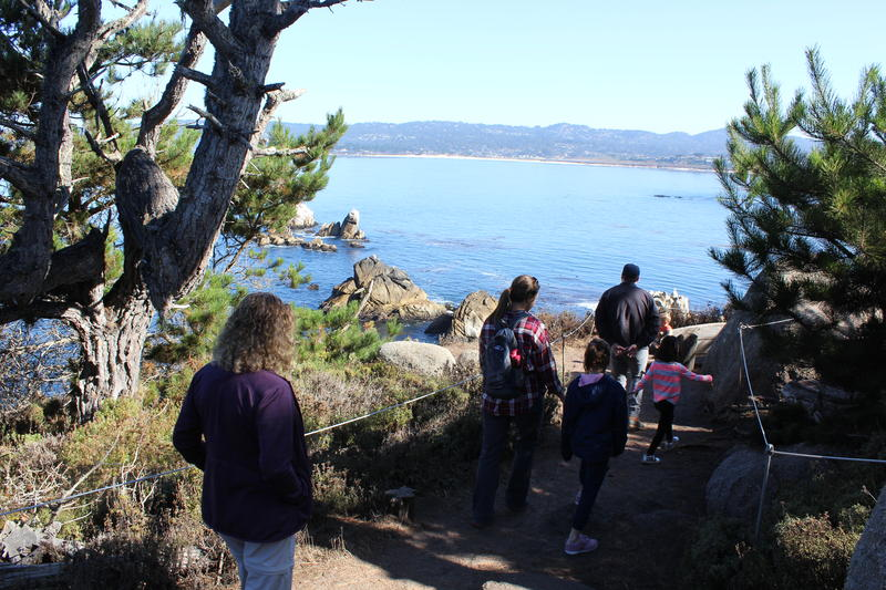 The McCarley family from Texas hikes through Point Lobos.