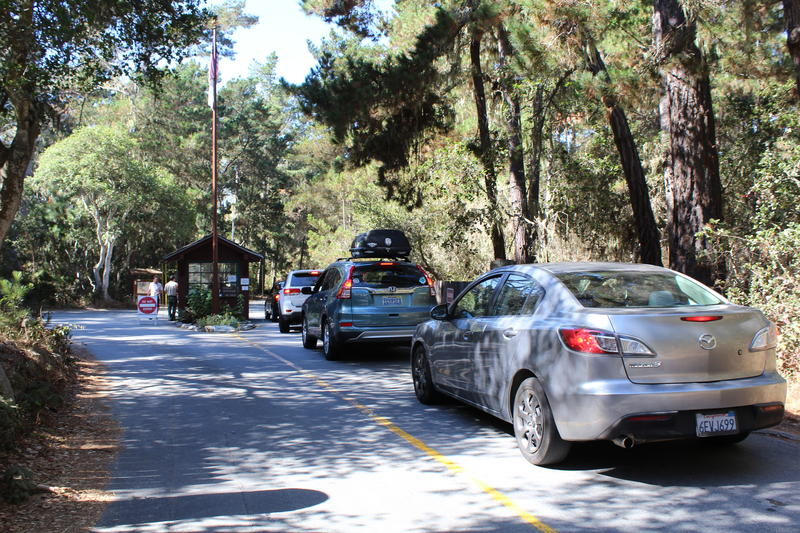 Cars line up to get into Point Lobos. Visitors compete for 150 parking spots.