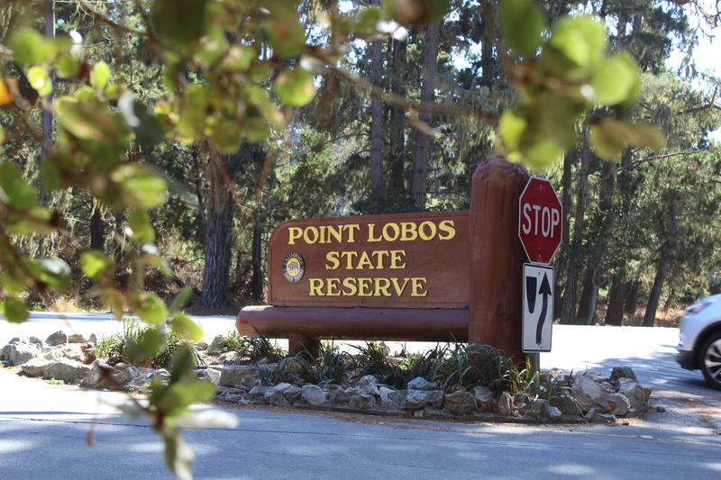 Point Lobos State Natural Reserve is planning to establish a reservation system. Overcrowding is threatening the reserve.