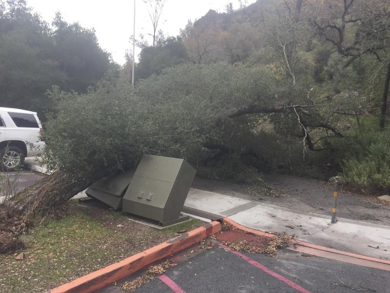 Rangers also prioritized clearing downed trees.