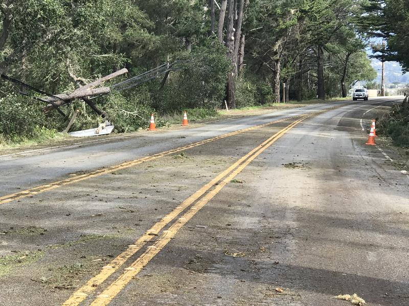 Fallen trees and powerlines near Point Lobos State Natural Reserve shutdown Highway 1 south Wednesday morning.