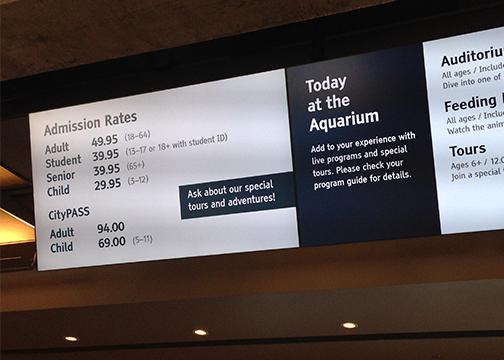 Aquarium Not Biting On Measure P 90 3 Kazu