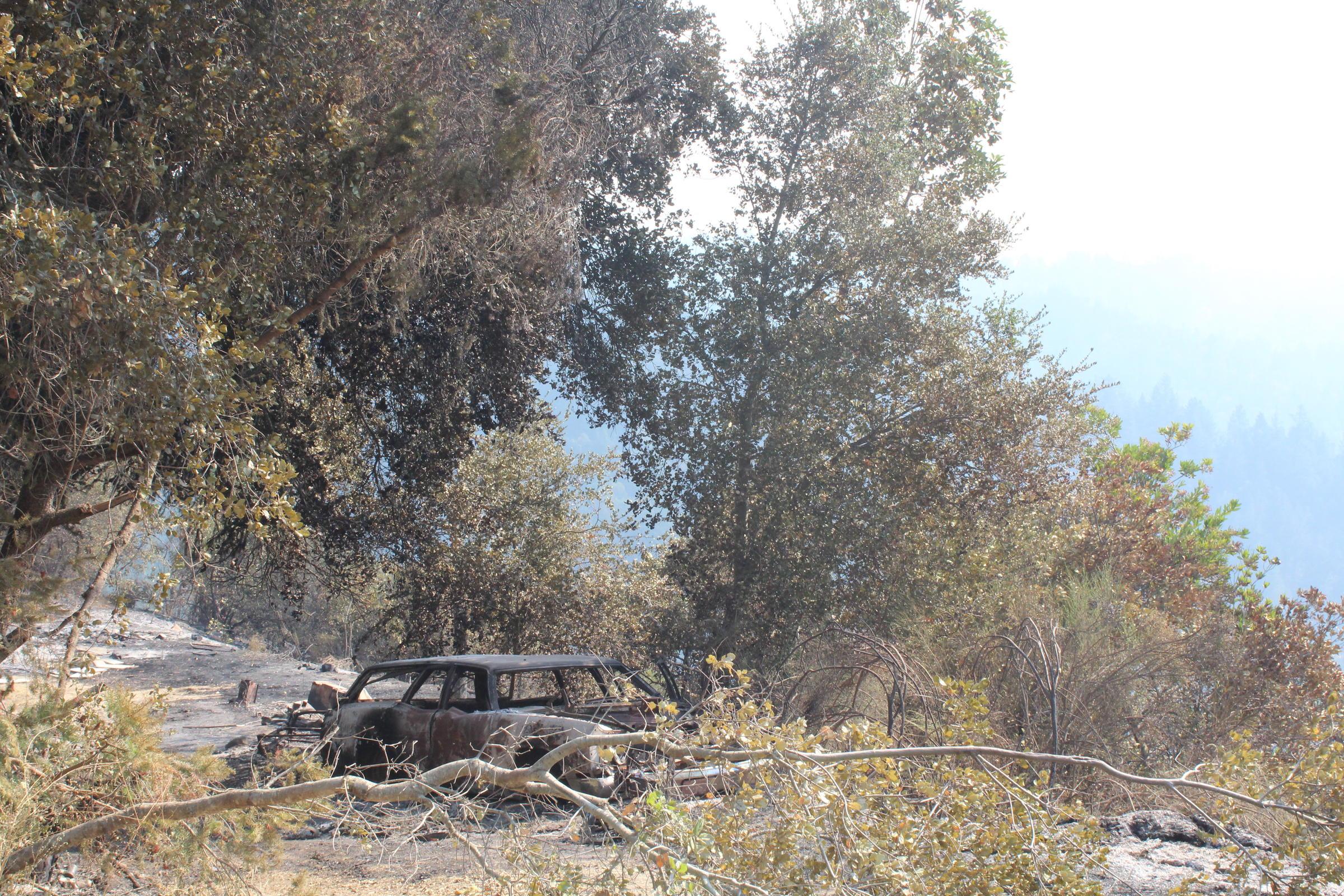 Bear Fire origin may be location of former chop shop