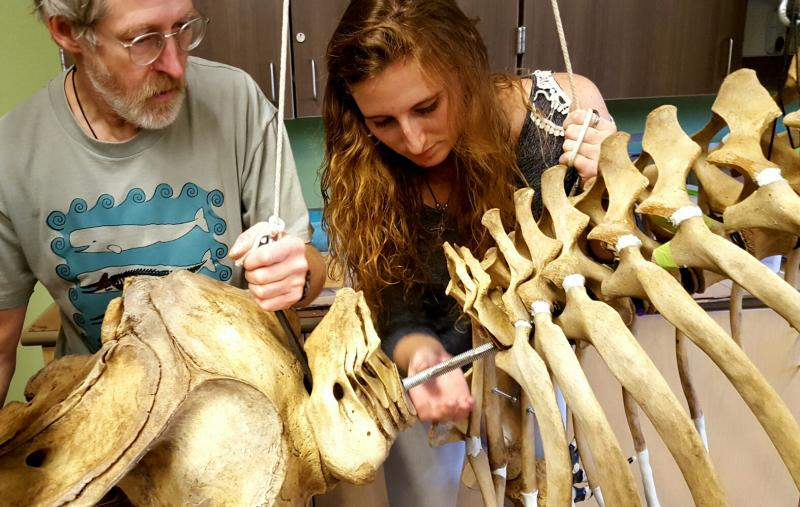 Instructor Lee Post and student Jamie Knaub slide the skull into place.
