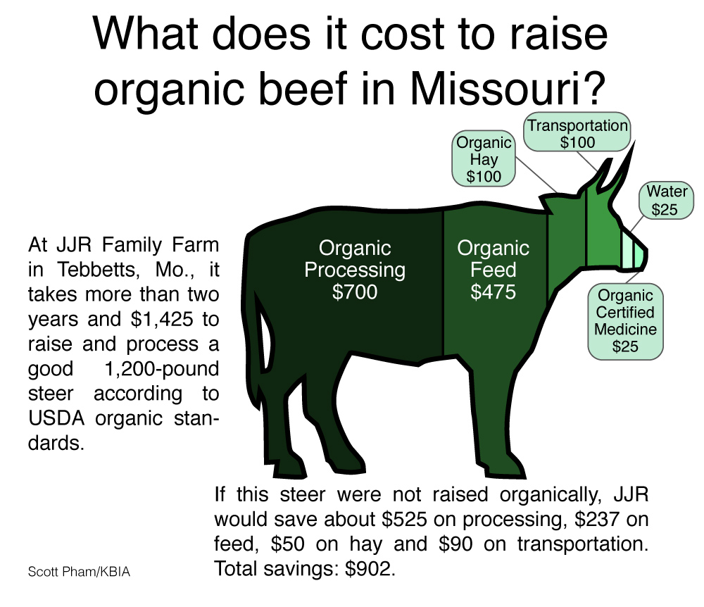 Can you make any money raising organic beef in missouri can you make any money raising organic beef in missouri infographic kbia xflitez Gallery