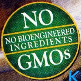 All about food GMO