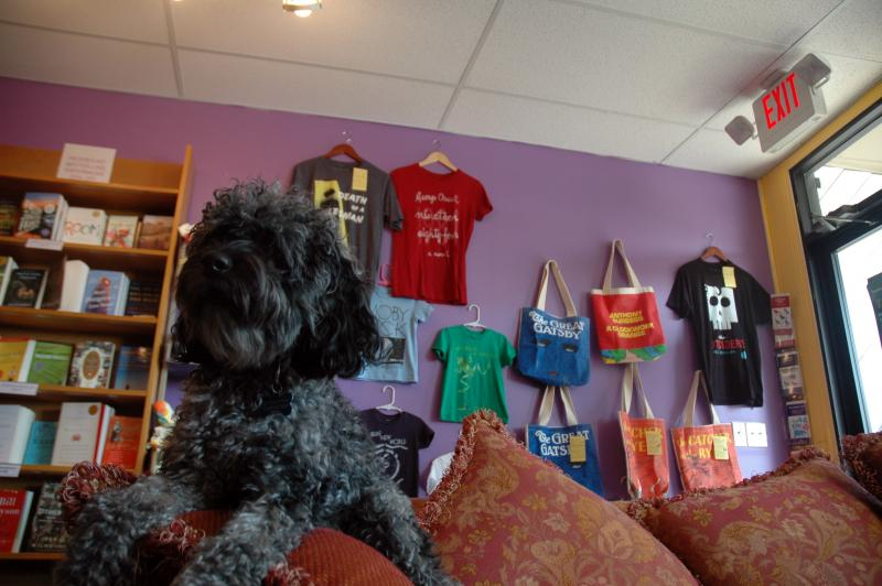 "Many bookstores have cats, but Henry is the official ""bookstore dog"" of Pudd'nhead Books in Webster Groves, well-known for its selection of children's books."